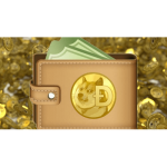 dogecoin-wallet-png